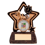 Little Star Swimming Award