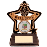 Little Star Well Done Award