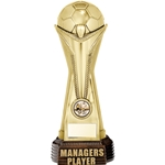 World Cup Managers Player Football Trophies