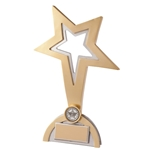 Resin Classic Star Achievement Trophies