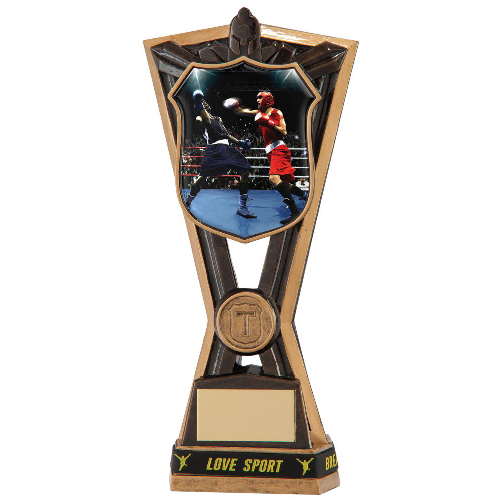 Resin Boxing Titans Trophies