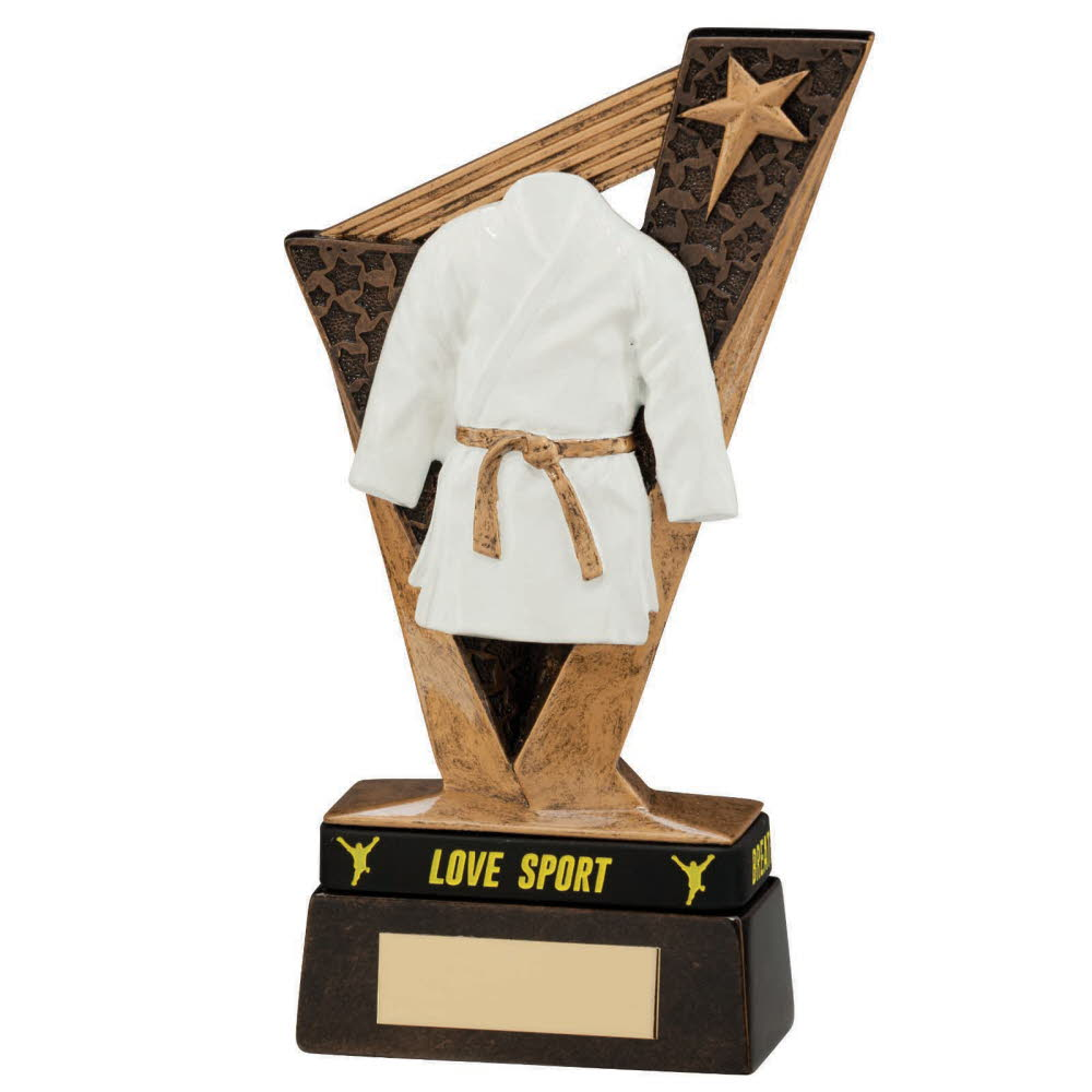 Resin Victory Martial Arts Trophies