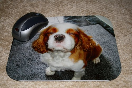 Personalised Printed Photo Mouse Mat