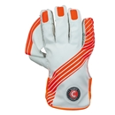Keepers Gloves