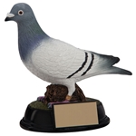 Elite Pigeon Racer Trophies