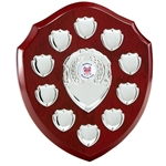Annual Wooden 10 Year Shield