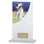 Cricket Curve Premium Jade Glass Trophies