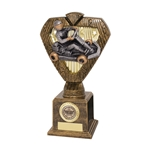Hero Legend Go Karting Trophies