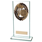 Maverick Glass Darts Trophies