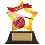 Acrylic Star Cricket Trophies