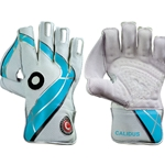 Clipper Cricket Wicket Keepers Gloves