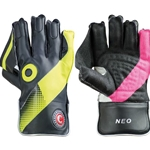 Cricket Wicket Keepers Gloves Mettle
