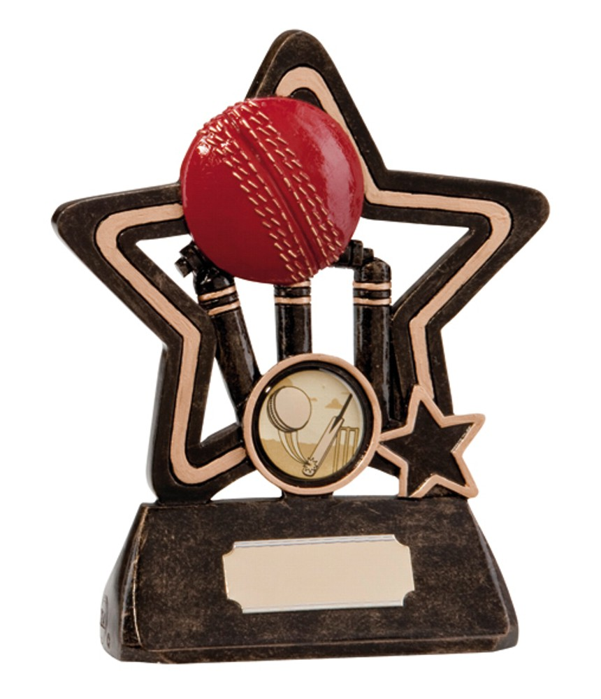 Resin Star Cricket Award