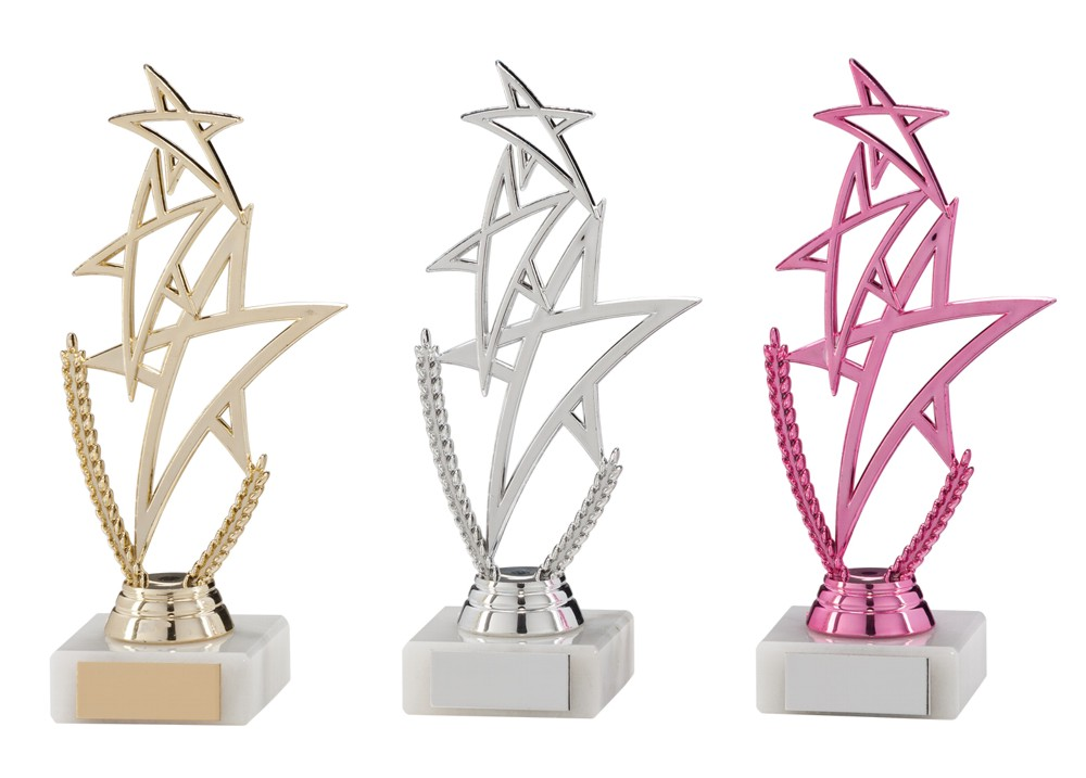 Any Sport Rising Star Trophies