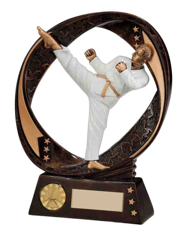 Resin Typhoon Karate Trophies