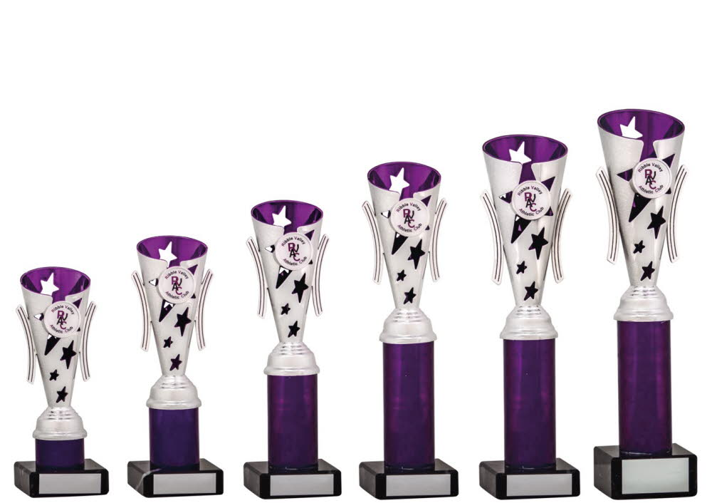 Silver and Purple Modern Star Cups