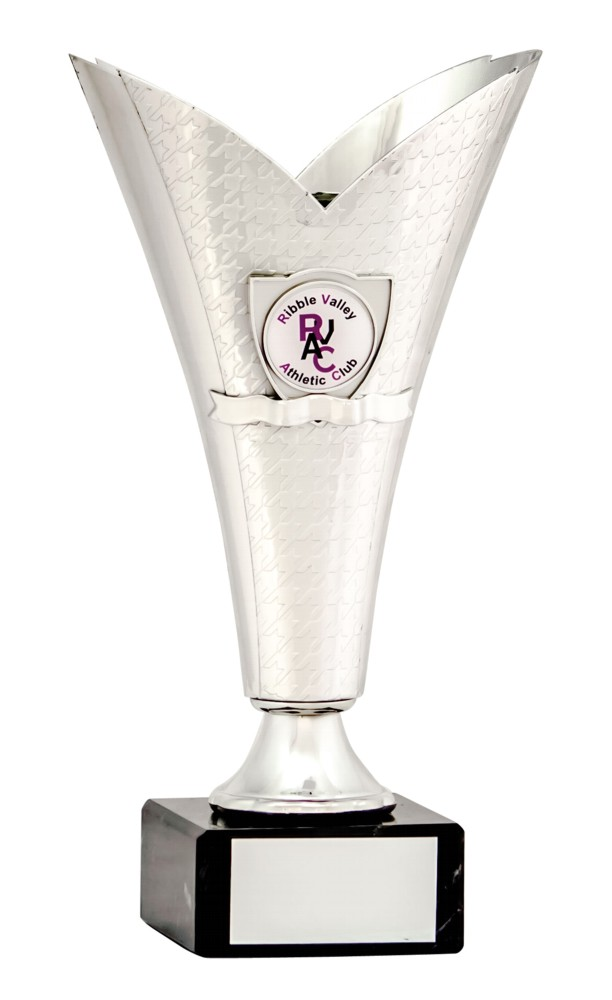 Silver Cup Multi Sport Trophies