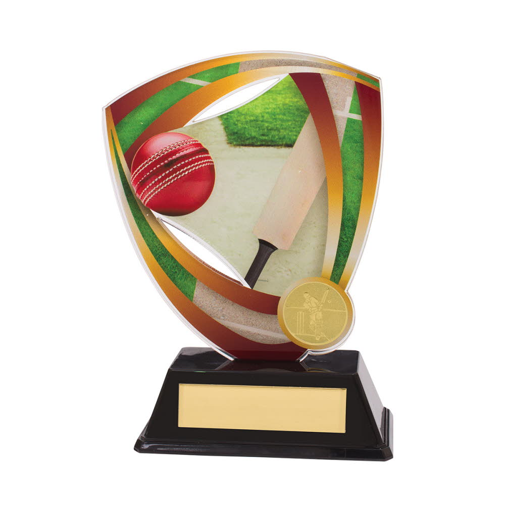 Cricket Acrylic Fortress Trophies