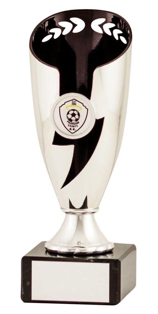 Silver and Black Presentation Cups