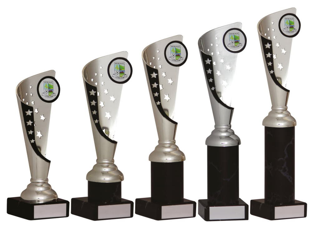 Silver and Black Any Sport Trophies