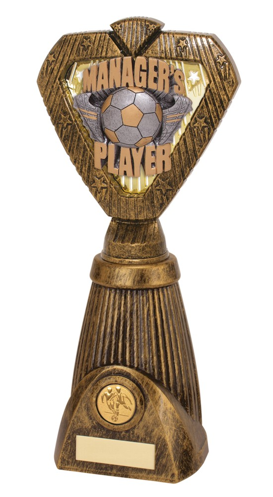 Hero Frontier Managers Player Football Trophies