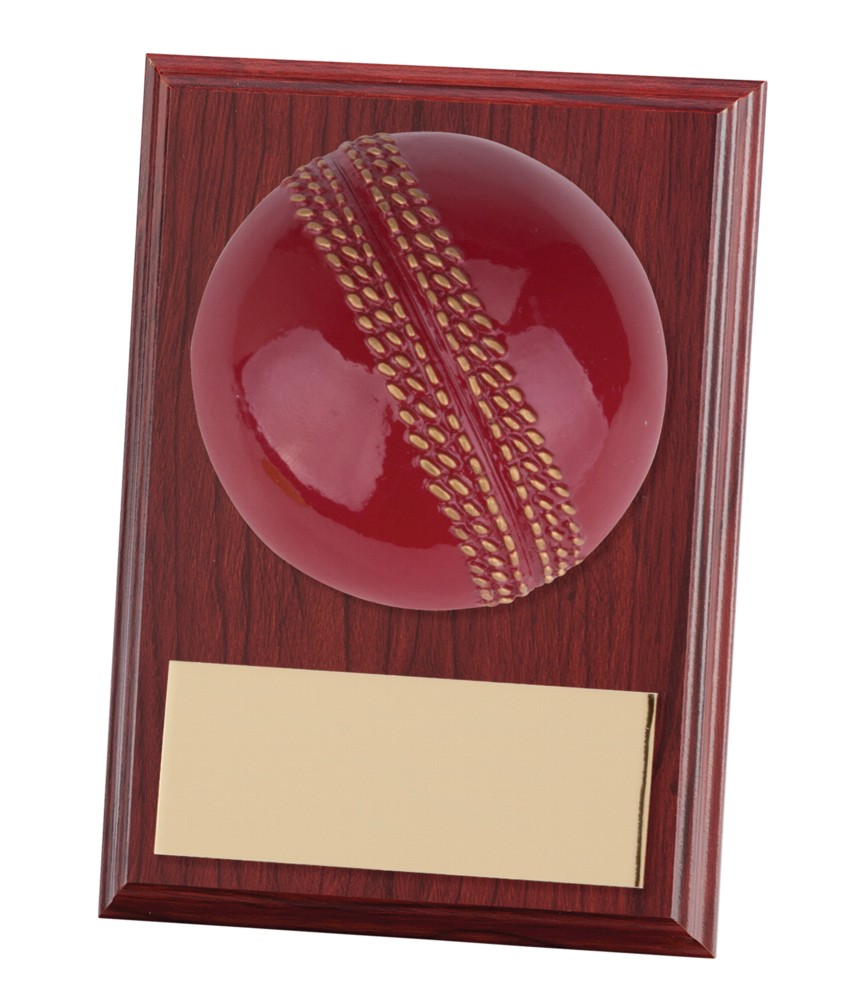 Horizon Cricket Wooden Plaques