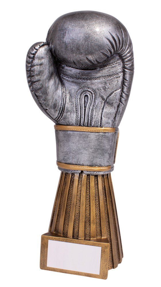 Resin Challenger Boxing Glove Trophies