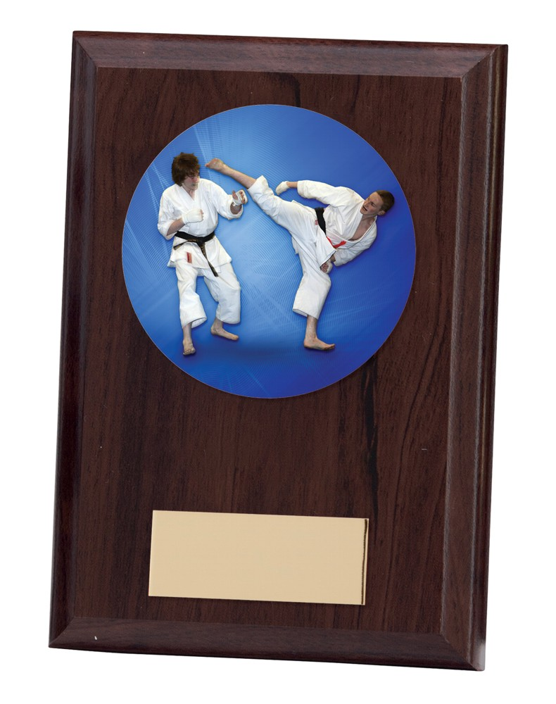 Phantom Karate Wooden Plaques