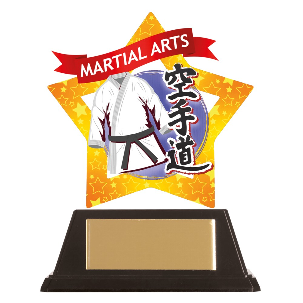 Acrylic Star Karate Trophies