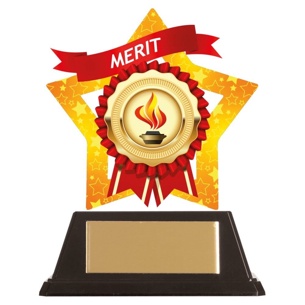Acrylic Star Merit Achievement Trophies