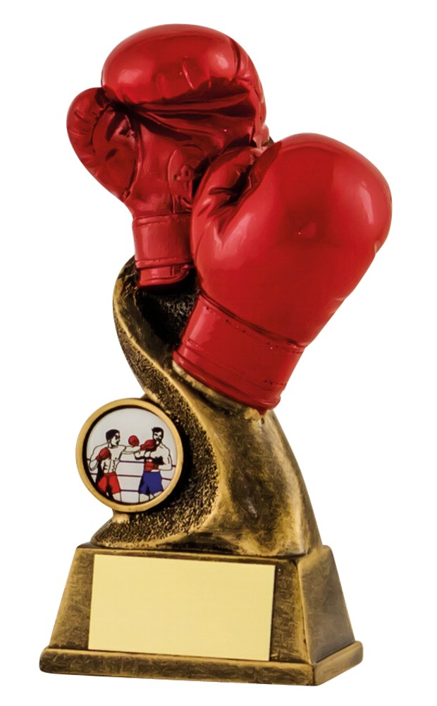 Resin Boxing Gloves Trophies