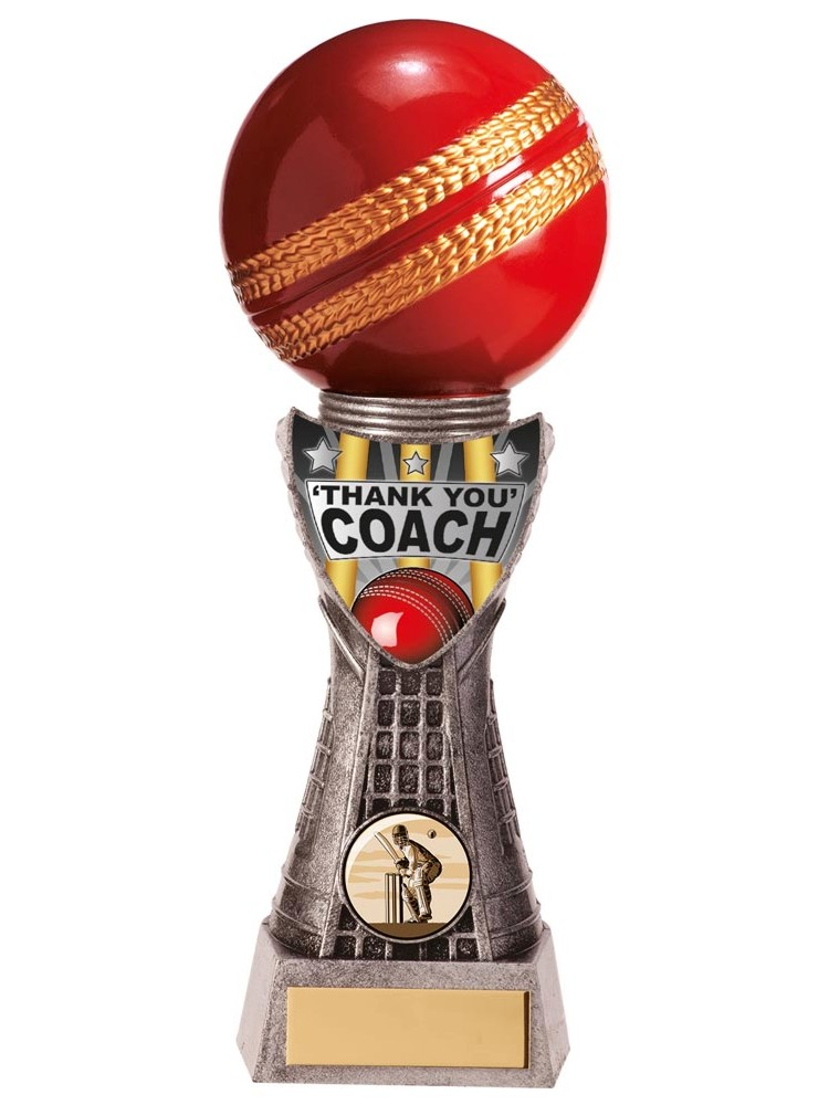 Valiant Thank You Coach Cricket Trophies