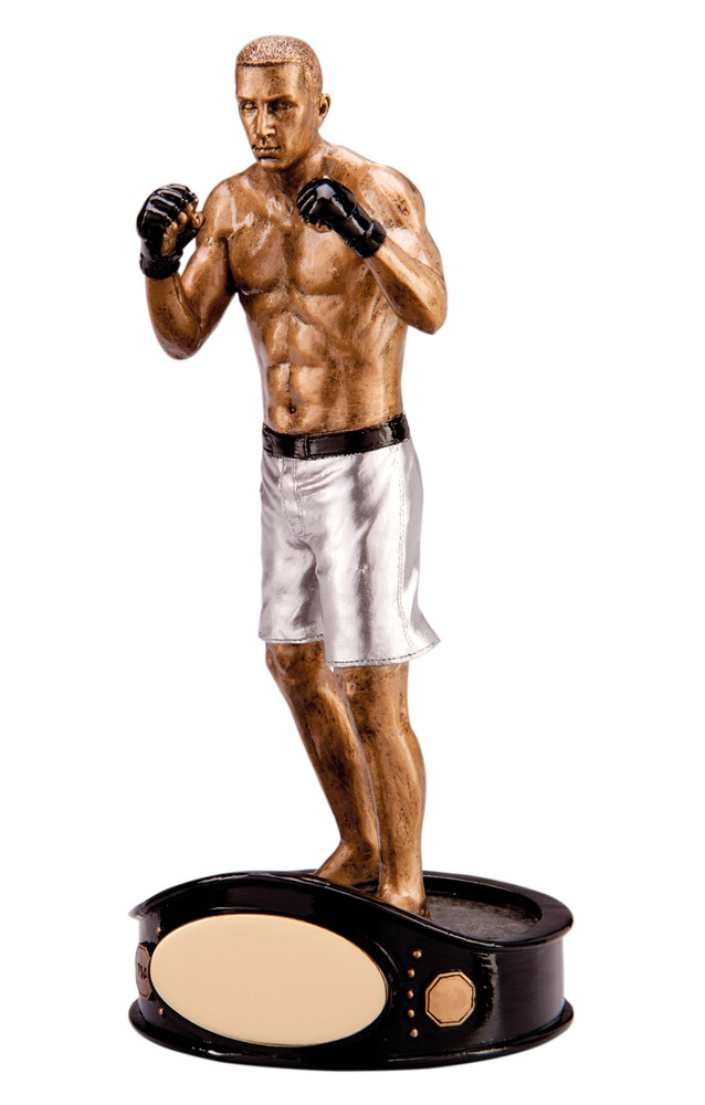 Ultimate MMA Fighter Figure Trophies