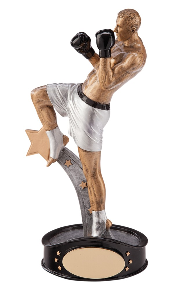 Ultimate Kick Boxing Figure Trophies
